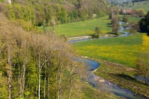 die Brenz im Eselsburger Tal