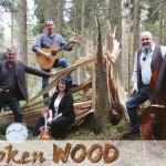 Broken-Wood