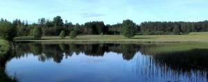 SiP_Weiherwiesen See